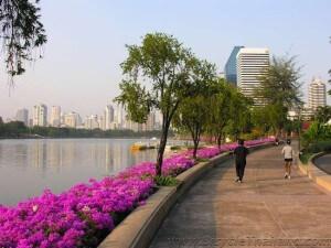 Benjakiti Park bangkok