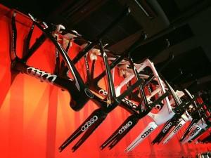 Bike Zone Ceepo frame displaywtmk